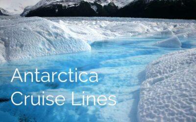 Best Antarctica Cruise Lines