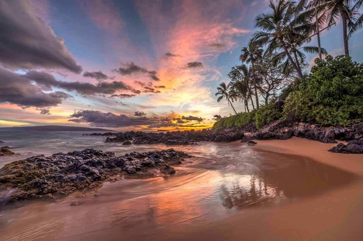 Gorgeous beach cove lined with palm trees during sunset in Hawaii.