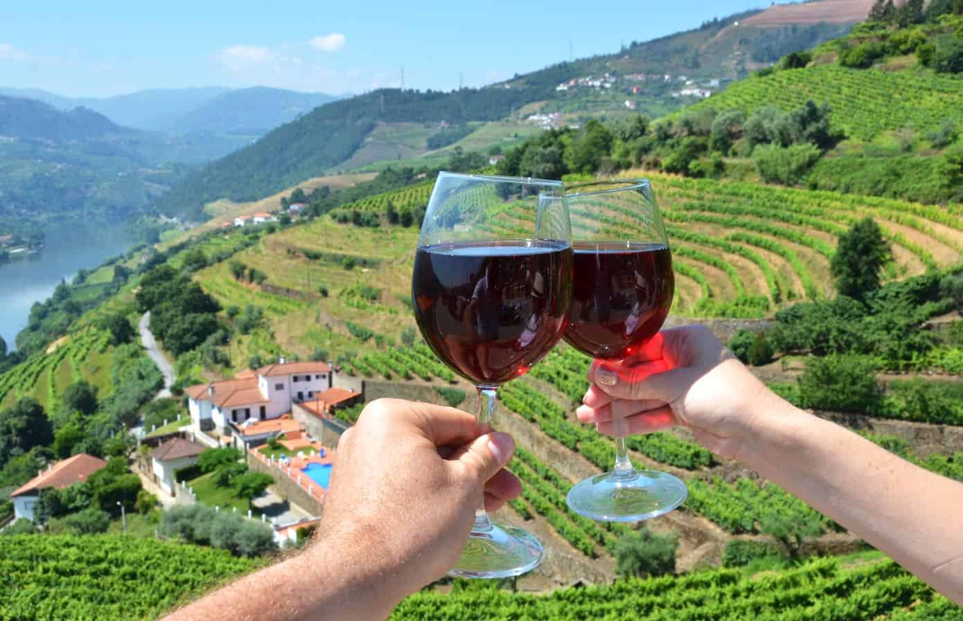 Sharing wine at the vineyards in Douro River Valley, Portugal.